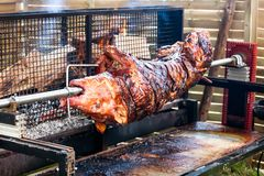 Roasted pig on the rack Royalty Free Stock Photo