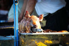 Roasted pig Royalty Free Stock Images