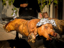 Roasted Pig on Spit Royalty Free Stock Images