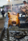 Roasted pig on a spit Royalty Free Stock Photography
