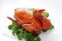 Roasted pigeon. A delicious roasted pigeon on a plate Royalty Free Stock Images