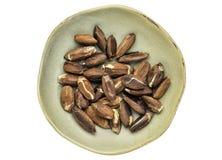Roasted pili nuts Royalty Free Stock Photo