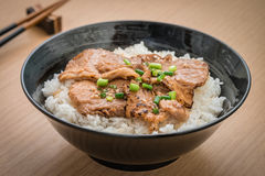 Roasted pork with japanese rice in bowl Stock Images
