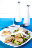 Roasted pork meat with fresh green salad Royalty Free Stock Photo
