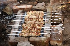 Roasted pork meat on the grill. Caucasian shashlik.  stock images