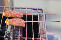 Roasted porks sticks grill on electrical roaster. Stock Photos