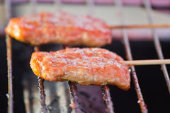 Roasted porks sticks grill on electrical roaster. Stock Photography