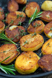 Roasted potato with sea solt and thyme seasoning Royalty Free Stock Image