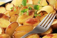 Roasted potatoes Royalty Free Stock Image