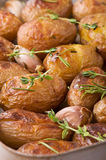 Roasted potatoes with garlic Royalty Free Stock Photography