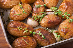 Roasted potatoes with garlic Royalty Free Stock Image