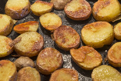 Roasted Potatoes in a pan Royalty Free Stock Images