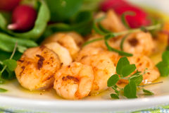 Roasted Prawns With Salad Of Corn Salad,radish,Che Stock Image
