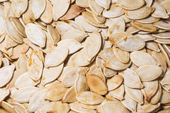 Roasted pumpkin seeds close-up. Agricultural background Royalty Free Stock Images