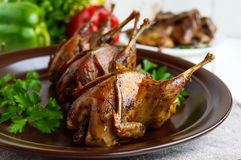 Roasted quail on a spit. Serving on a ceramic plate with greens. Royalty Free Stock Photography