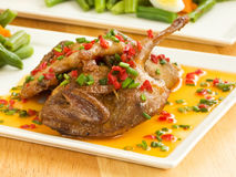 Roasted quails. Dinner plate with roasted quails in saffron sauce and vegetable garnish. Shallow dof Royalty Free Stock Photography