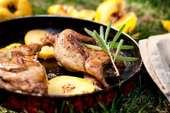Roasted quails with quince Royalty Free Stock Photography