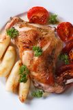 Roasted rabbit leg with apples and tomatoes macro. Vertical Stock Photography