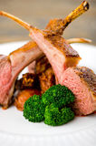 Roasted Rack of Lamb royalty free stock photography