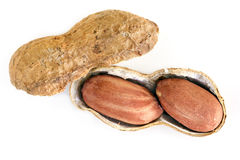 Roasted Raw Peanuts in Shell Top View isolated. Roasted raw peanuts in shell, top view, isolated Royalty Free Stock Photo