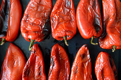 Roasted red pepper. On black background stock image