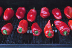 Roasted red peppers. On grill Royalty Free Stock Image