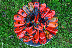 Roasted red peppers, top view Royalty Free Stock Images