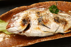 Roasted Red sea bream Royalty Free Stock Photos