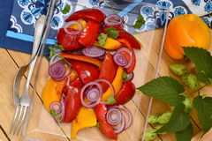 Roasted red and yellow bell pepper with purple onion Royalty Free Stock Photography