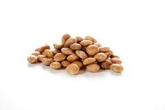 Roasted sacha inchi seeds. Good source of plant based omega 3 fatty acids. Plukenetia volubilis Royalty Free Stock Photo