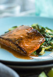 Roasted Salmon. Salmon filet roasted with red curry sauce and sauteed greens Stock Photos