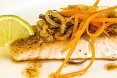 Roasted salmon fillet Royalty Free Stock Photography