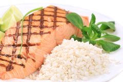 Roasted salmon fillets with rice. Stock Image