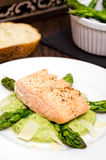 Roasted salmon on mash of asparagus Stock Images