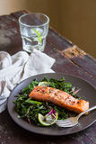 Roasted salmon or trout with chard leaves salad and onion Royalty Free Stock Images