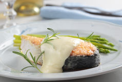 Free Roasted Salmon Under Cheese Sauce Royalty Free Stock Photos - 25594418