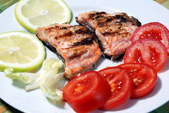 Roasted salmon and vegetables. Slices of salmon and vegetable garnish Royalty Free Stock Photo