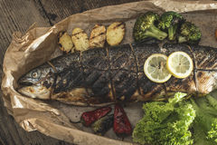 Roasted salmon and vegetables Royalty Free Stock Image