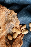 Roasted salted almond in nutshell Stock Photography
