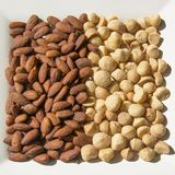 Roasted and Salted Almonds and Macadamia Nuts Stock Images