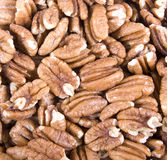Roasted Salted Pecans Stock Photography