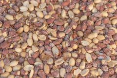 Roasted and salted red skin peanuts for sale at the fair stall. Selective focus Royalty Free Stock Photography
