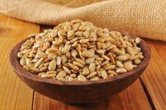 Roasted, salted sunflower seeds Stock Photos
