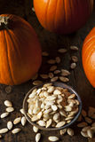 Roasted Salty Pumpkin Seeds Stock Photography