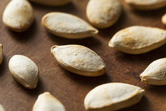 Roasted Salty Pumpkin Seeds Stock Images