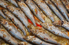 Roasted sardines Royalty Free Stock Images