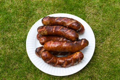 Roasted sausages Stock Images
