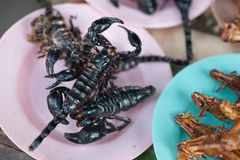 Roasted scorpions and water bugs as snack food Stock Photography