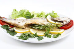 Roasted Sea Bass Royalty Free Stock Photography