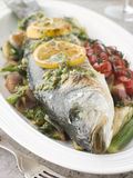 Roasted Sea Bass with Fennel, Lemon  and Tomatoes Royalty Free Stock Images